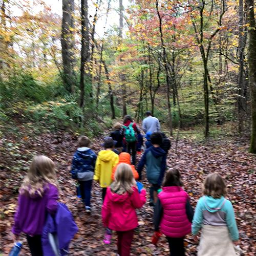 Kids Hike Heyward Community Forest